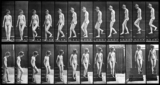 Eadweard Muybridge, Woman walking downstairs, late 19th century
