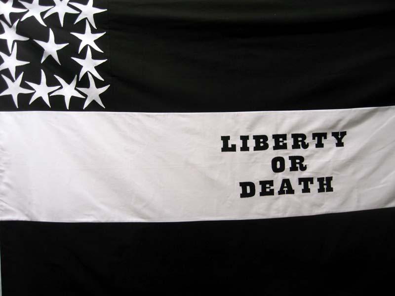 Gardar Eide Einarsson, Liberty or death, 2005