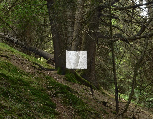 Jan Imberi, Untitled, 2008