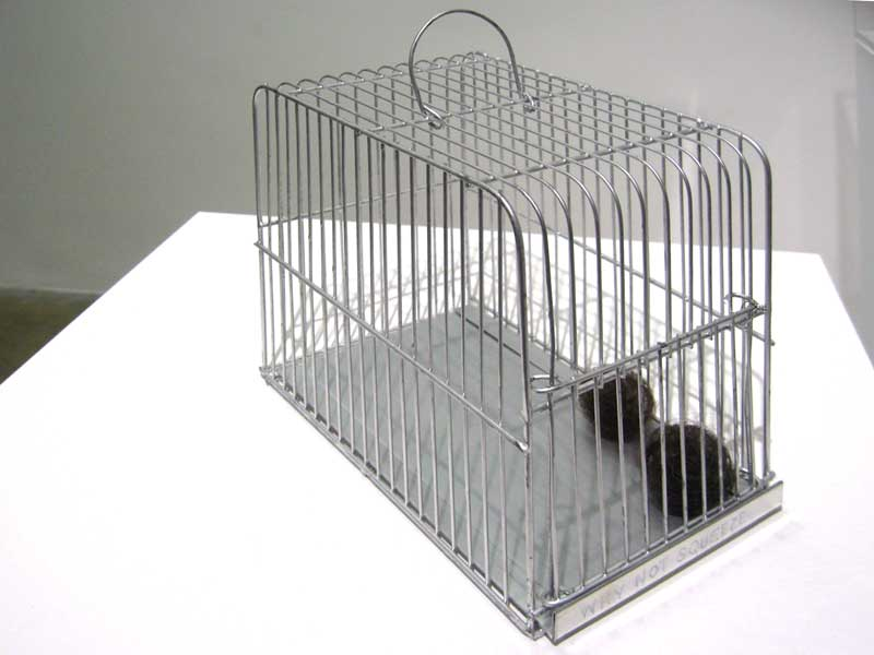 Mona Hatoum, Why not squeeze..., 2009