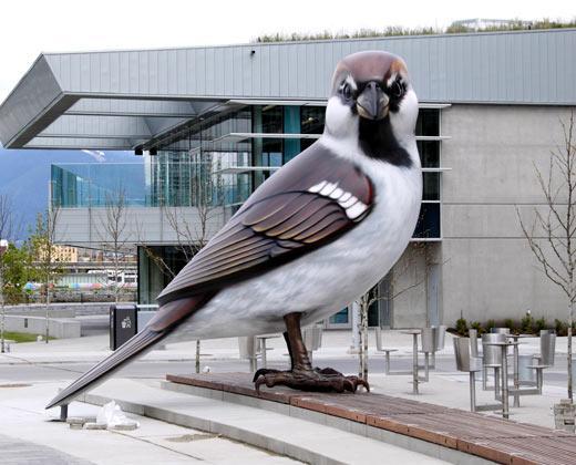 Myfanwy MacLeod, The Birds, 2010