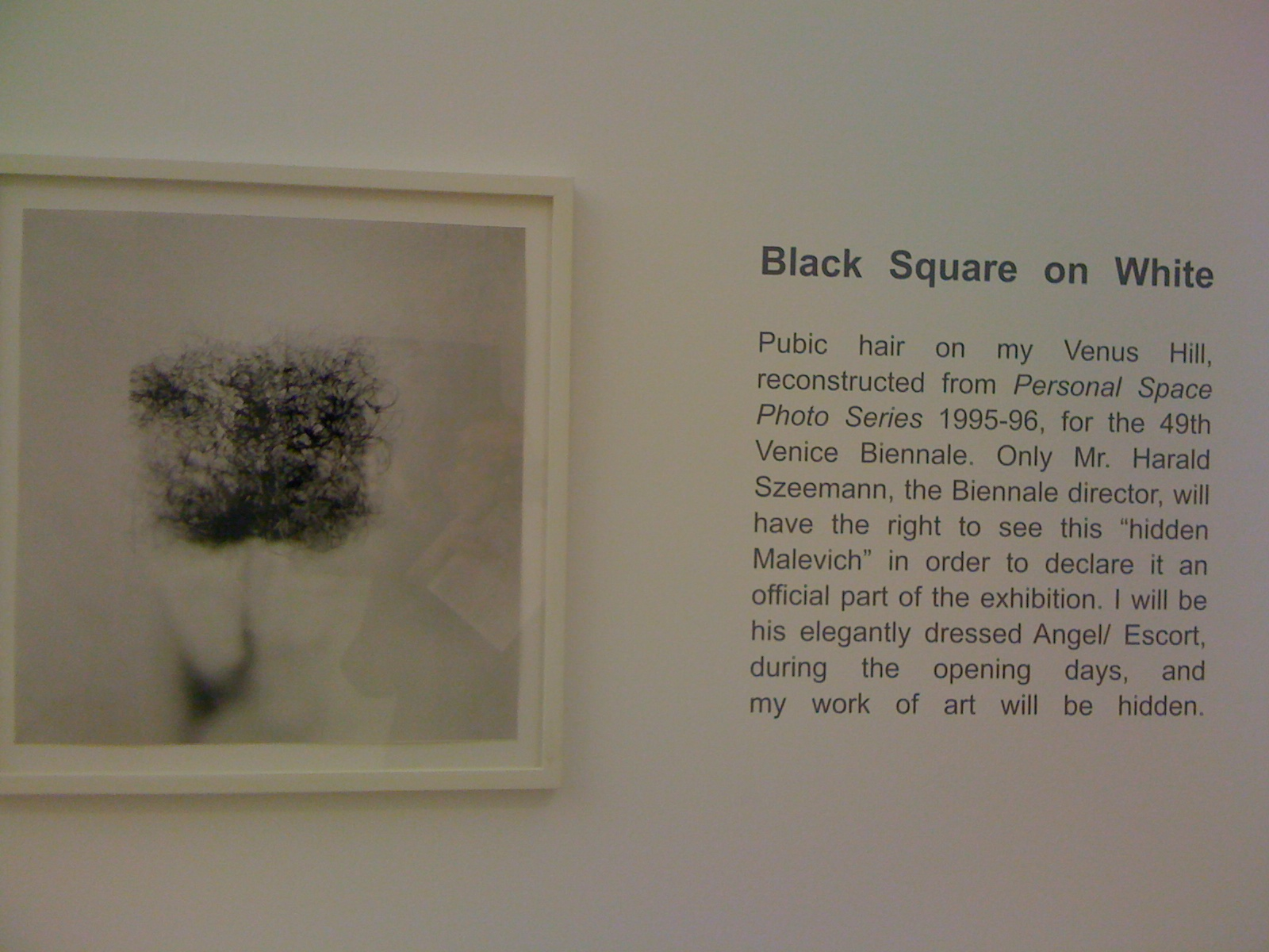 Tanja Ostojic, Black Square on  White, 2001