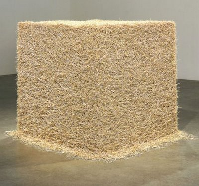 Tara Donovan, Untitled (Toothpicks), 1996, wooden toothpicks, dimensions unavailable, but about 40 x 40 x 40 in