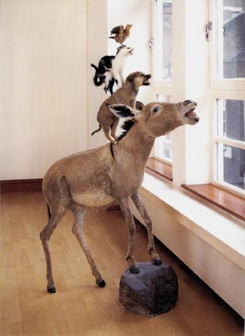 Maurizio Cattelan (1960), 'The first, they said, sweet like love, second bitter, like life, third soft, like death', 1998, taxidermied donkey, dog, cat, bird, 165.10 x 119.38 x 40.64 cm